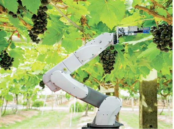 Robot-nong-nghiep-tuong-lai-cua-nganh-nong-nghiep-hien-dai