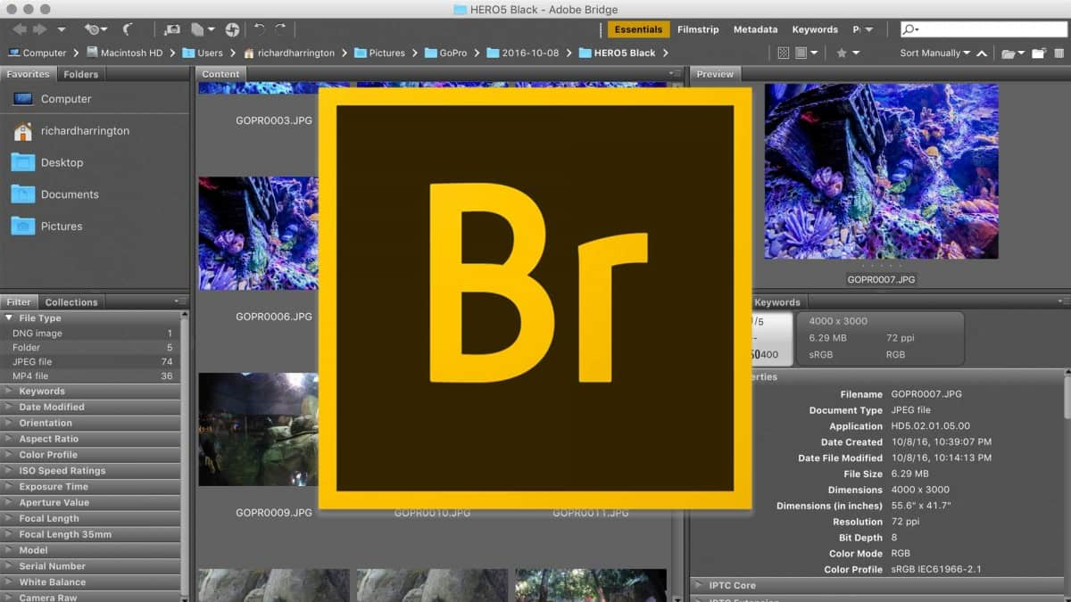 adobe-bridge